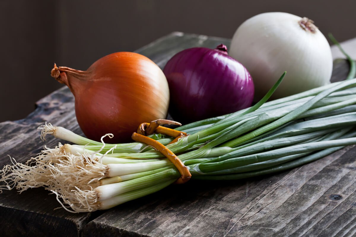 Onion Overview – International Produce Group